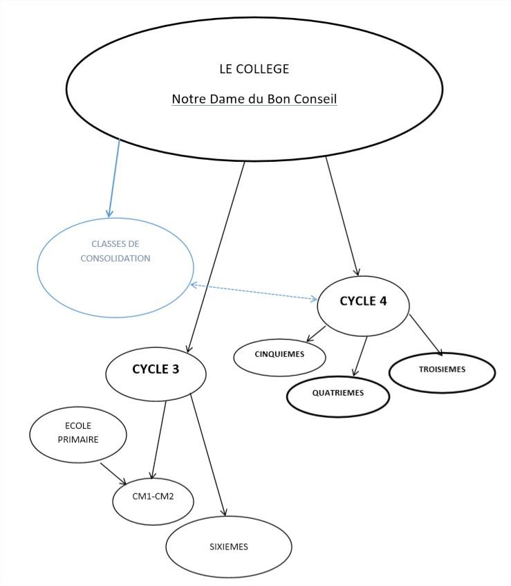 Structure du college Notre Dame du Bon Conseil